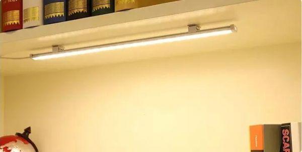 新生必备_井冈山大学2018最全宿舍生存攻略!,井冈山大学梧桐树下